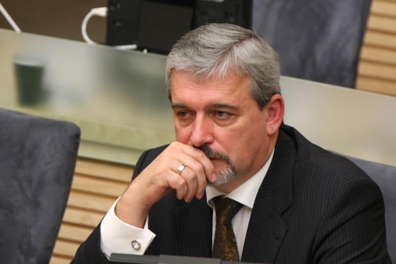 Liberalų sąjūdžio kandidatas į Seimo vicepirmininkus - E.Tamašauskas