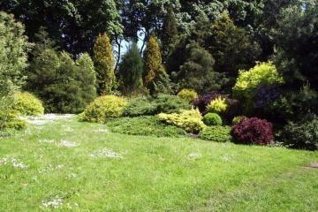 Kauno botanikos sodui - 85-eri