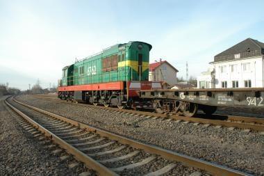 Dėl geležinkelio plėtros nori kirsti mišką