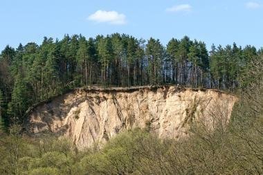 """""""Tebūnie naktis"""": regioninių parkų direkcija siūlo savo programą"""