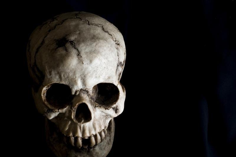 Nusipirko sodybą kaime – rado žmogaus kaukolę