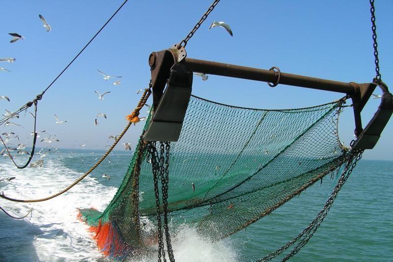 Ministras ragina atiduoti žvejybinius tinklus (atidavimo vietos)