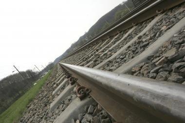 Pavogta pusantro šimto metrų siaurojo geležinkelio bėgių