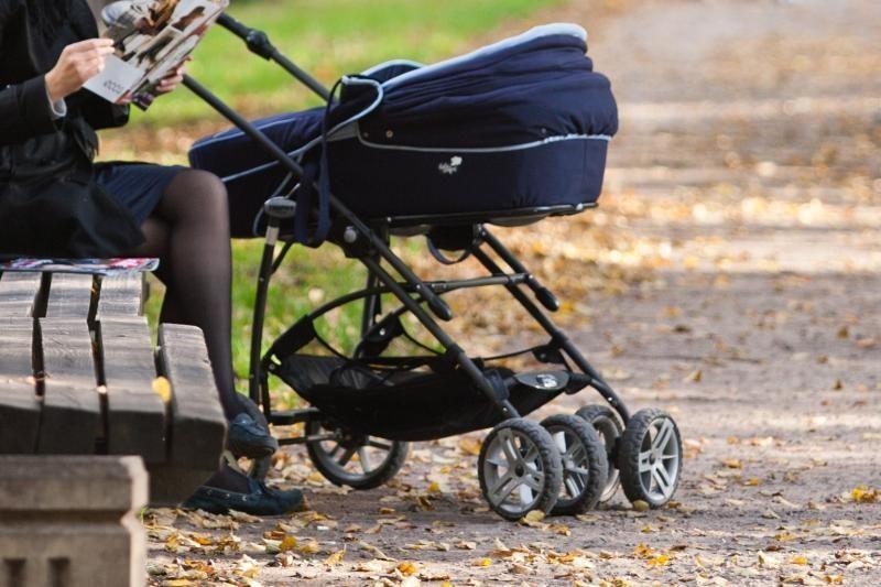 Motinystės pašalpas siūlo mažinti ir nedraudžiamų pajamų gavėjams