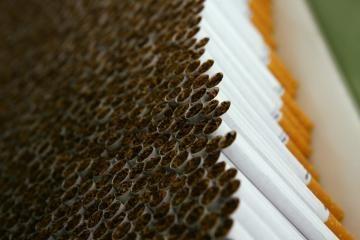 Muitininkai sulaikė balduose supakuotas cigaretes
