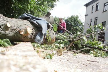 Tik dabar skirti pinigai sumokėti už audros padarinių pašalinimą