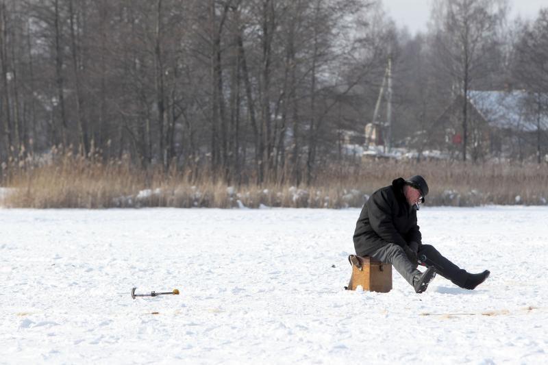 Įdomu: ką veikia žuvys šaltuoju metu laiku?