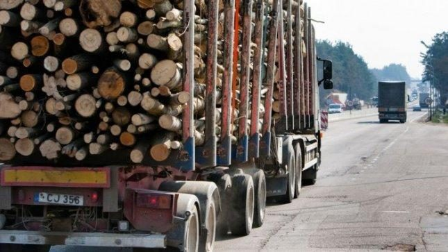 Medienos perdirbėjai sufleruoja, kaip užsidirbti papildomą milijardą