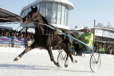 Žirgų lenktynės Sartuose – vasarį