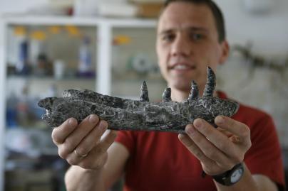 Lenkijos mokslininkai rado naują dinozauro rūšį