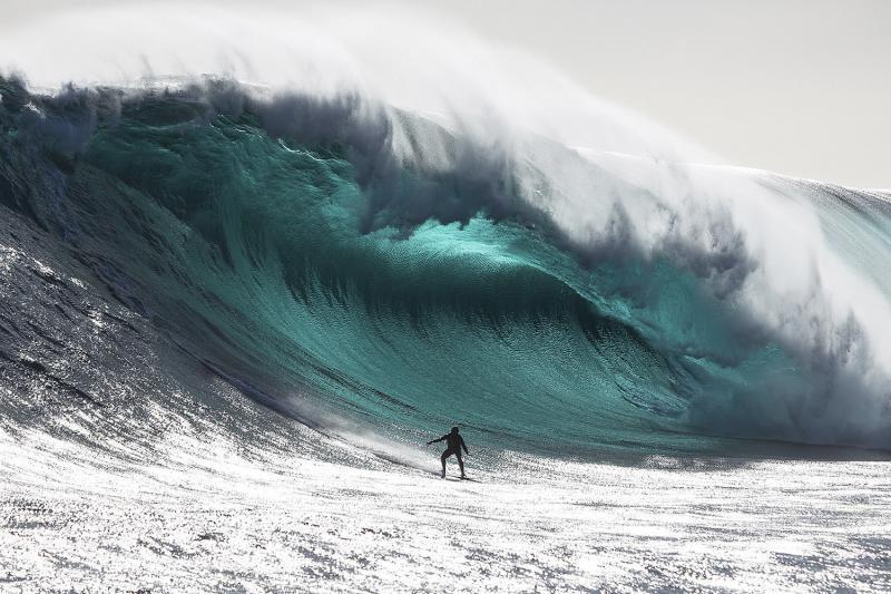 Giliai po vandenynų dugnu esama kitokios gyvybės, teigia mokslininkai