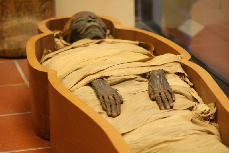 Tiria, ar Egipto mumija tikra