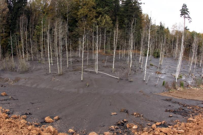 Kariotiškių sąvartyne į mišką pateko 2 tūkst. kubinių metrų dumblo