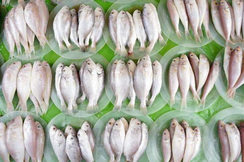 FNTT sustatė  šešėlinę prekybą žuvimi