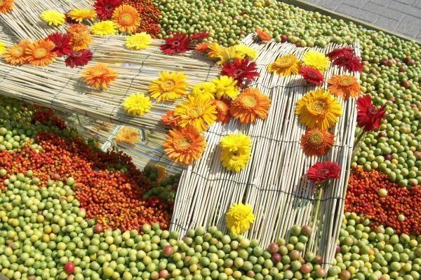 Savaitgalį vilniečiai kviečiami pasigrožėti kilimais iš gyvų gėlių