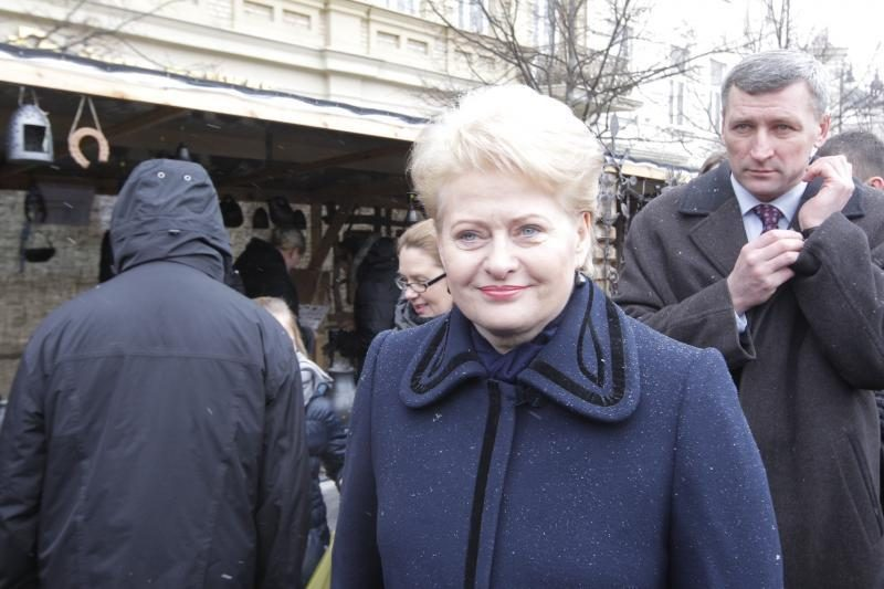 Prezidentė užstojo L. Linkevičių dėl viceministro