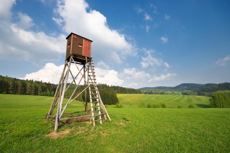 Kodėl pavasarį pleška medžiotojų bokšteliai?