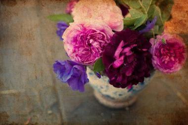 Vilniuje bus atidaryta rožių paroda