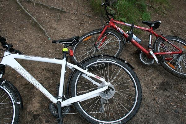 Pasvalio rajone mirtinai partrenkta dviratininkė