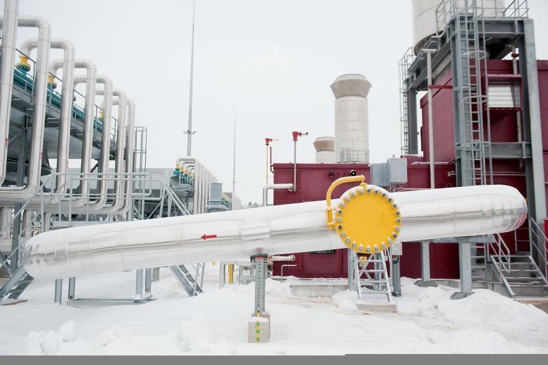 Aplinkos apsaugos komitetas siūlo stabdyti skalūnų dujų projektą