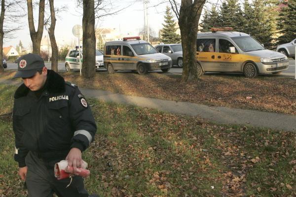 Policija: kol kas nežinome, kas nudyrė šunims kailius