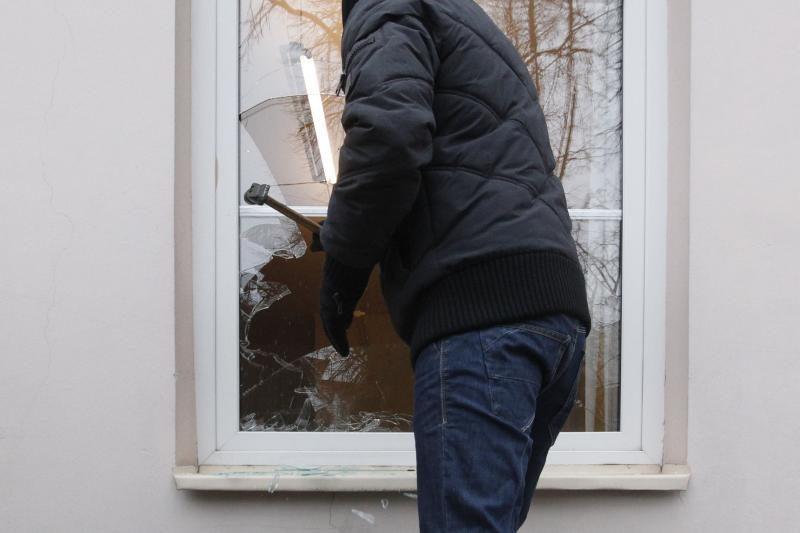 Ilgapirščiai iš Garliavos mokyklos pavogė vejapjovę