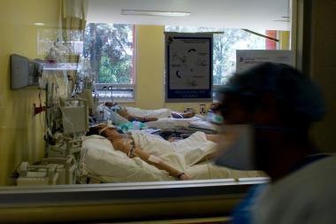 Lenkijoje įsisiautėjo kiaulių gripas
