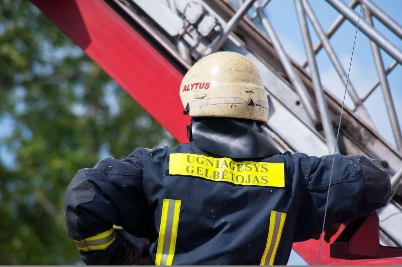 Seime norima paskatinti burtis ugniagesius savanorius
