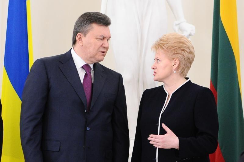 D. Grybauskaitė ragina V. Janukovyčių spręsti J. Tymošenko klausimą