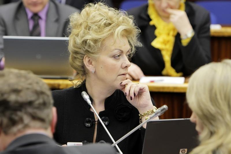 V. Tomaševskis svarsto Seimo nario mandatą atiduoti I. Rozovai