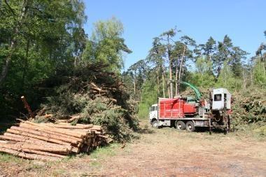 Miškovežiai Varėnos rajone gadina vietinius kelius