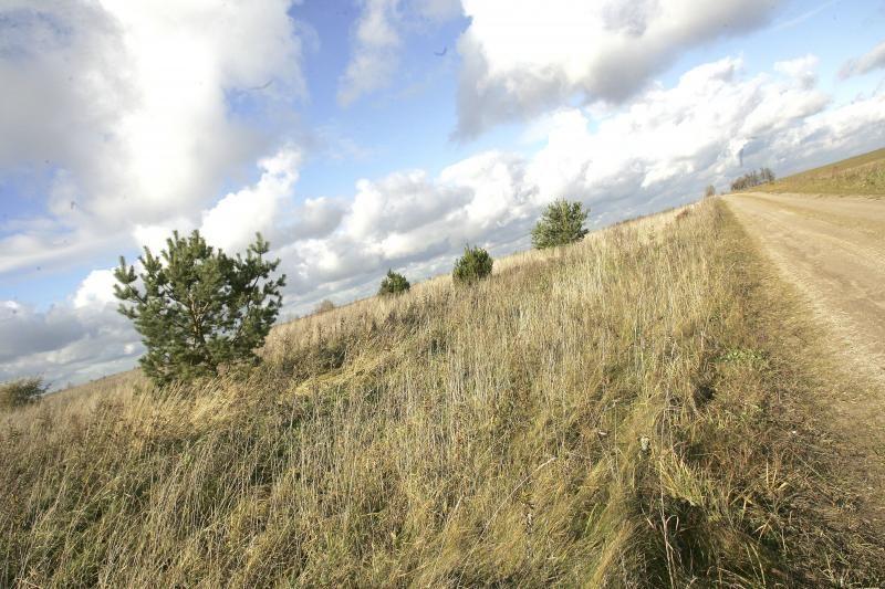 Lietuvoje stringa valstybinės žemės pardavimas