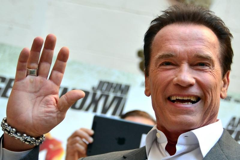 A. Schwarzeneggeris pietavo su savo pavainikiu sūnumi