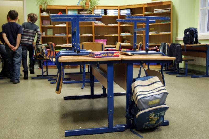 Švietimo ministerija žada ieškoti būdų kaime išsaugoti mažas mokyklas