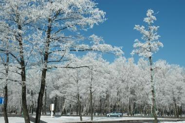 Klaipėdos neapleidžia šaltis
