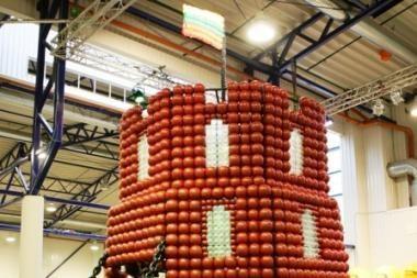 Gedimino pilis iš 10 tūkst. balionų – rekordų knygoje