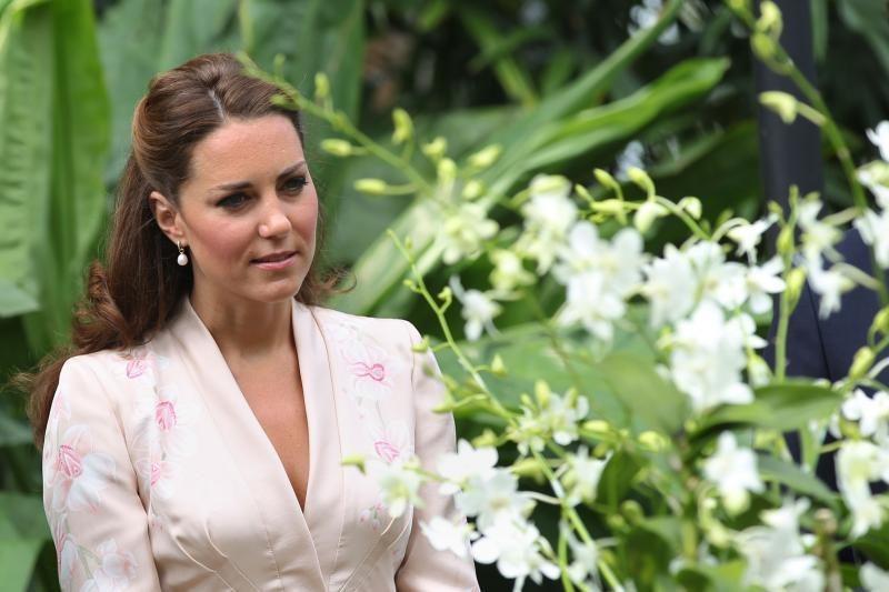 Besilaukiančiai Princo Williamo žmonai Catherine suėjo 31-eri