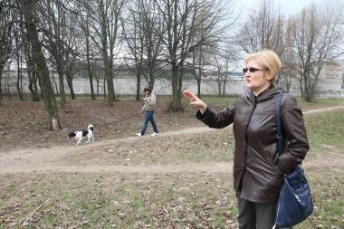 Specialioje aikštelėje vedžiojami šunys kenčia nuo praeivių (papildyta)