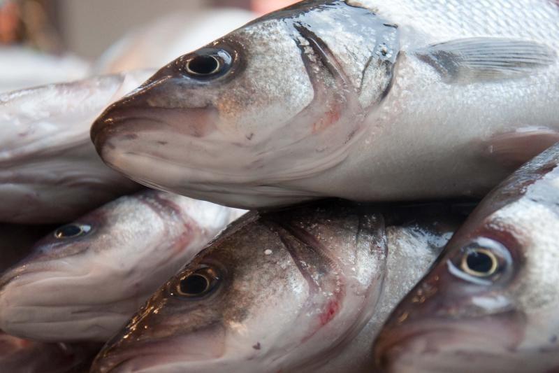 Aplinkos viceministras: žvejų pinigai – tik žuvų ištekliams saugoti