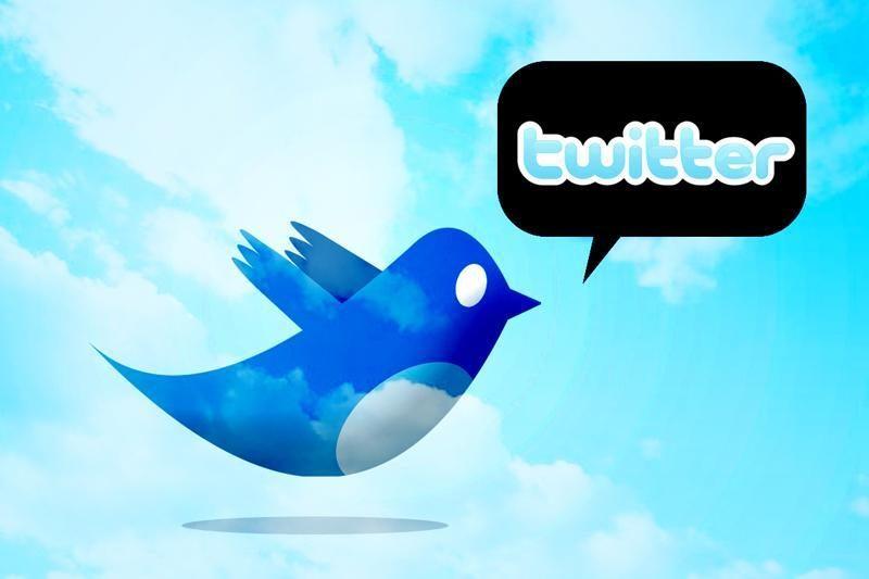 """""""Twitter"""" smūgiavo Vokietijos neonacių grupuotei"""