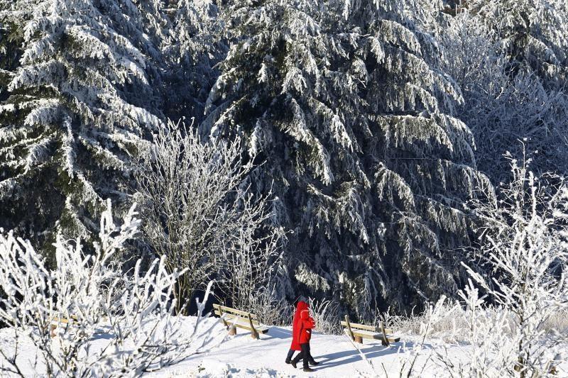 Sniegas ir šaltis neapleidžia Europos