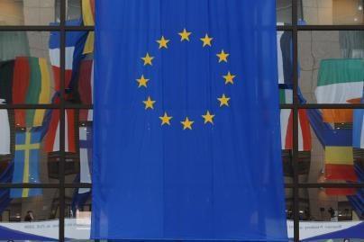 Dūma Lietuvą nori parodyti nevisaverte ES nare