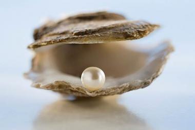 Pietaudamas rado perlą
