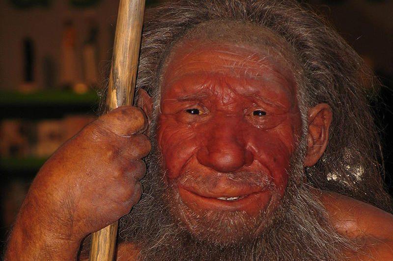 Antropologai: tarp žmonių ir neandertaliečių nebuvo jokio kryžminimosi