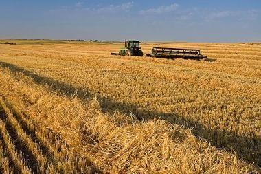 Vėluoja išmokos ūkininkams