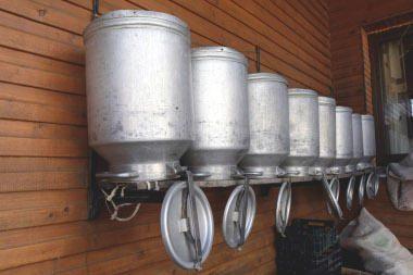 Nauja pieno perdirbimo gamykla gali iškilti Ramygaloje
