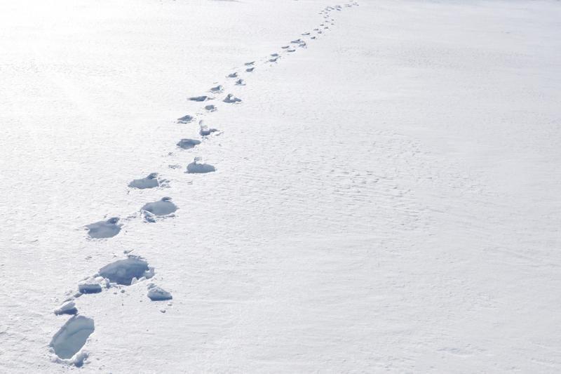 Paslaptingi sniego ratai – ne ateivių darbas