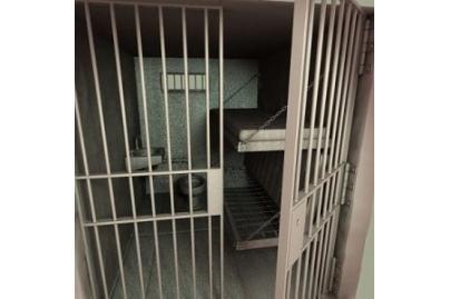 Panevėžyje vagiliavo kalinės dukra