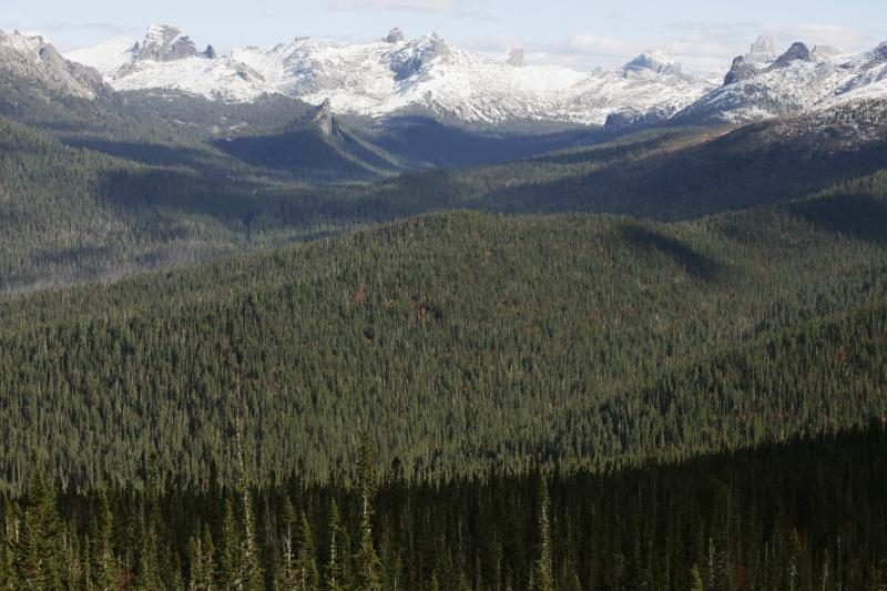 Šveicarijos Alpėse žuvo penki alpinistai iš užsienio