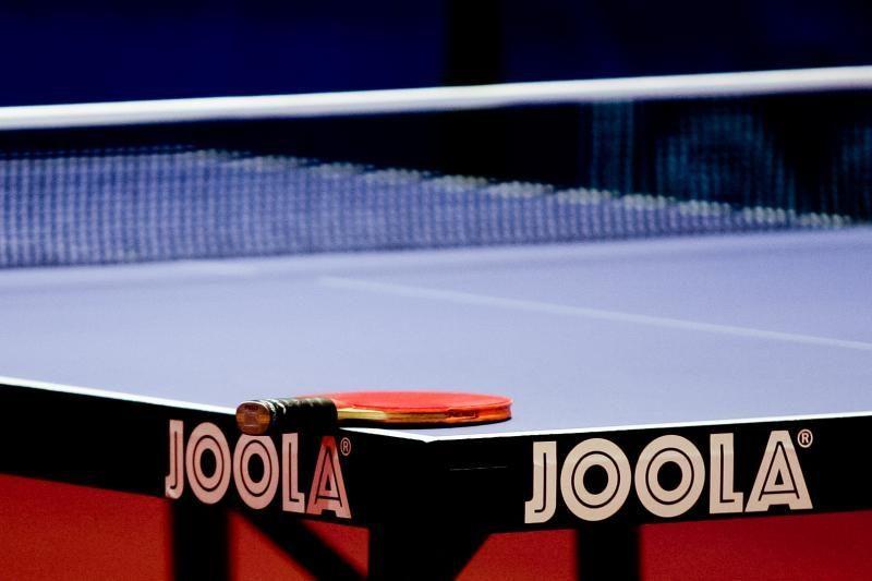 Lietuvis baigė pasirodymą olimpinės atrankos turnyre